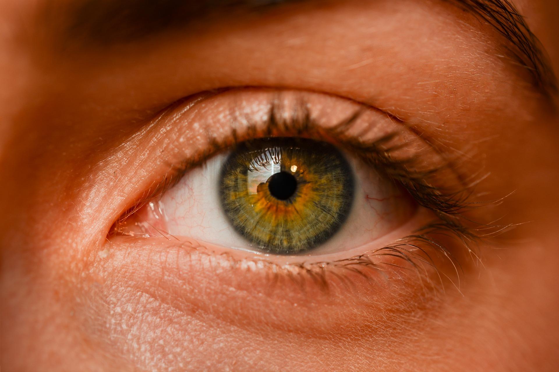 close up of eye and cheek