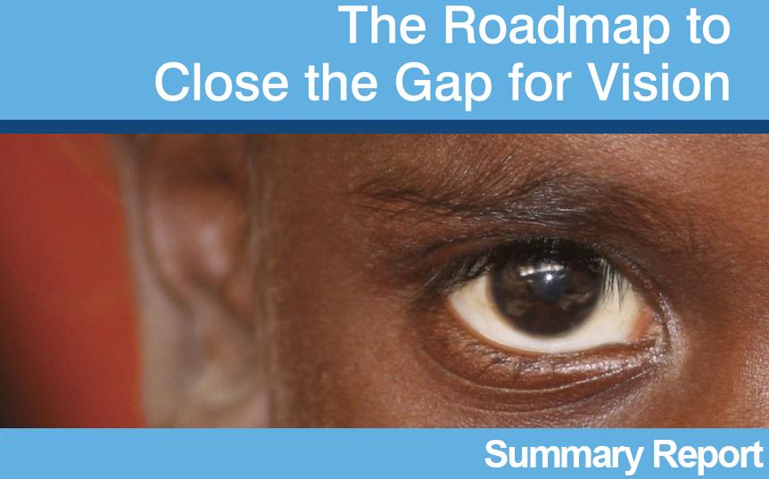 2017 roadmap summary report