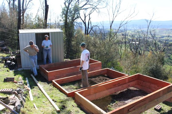 creating a new veggie patch
