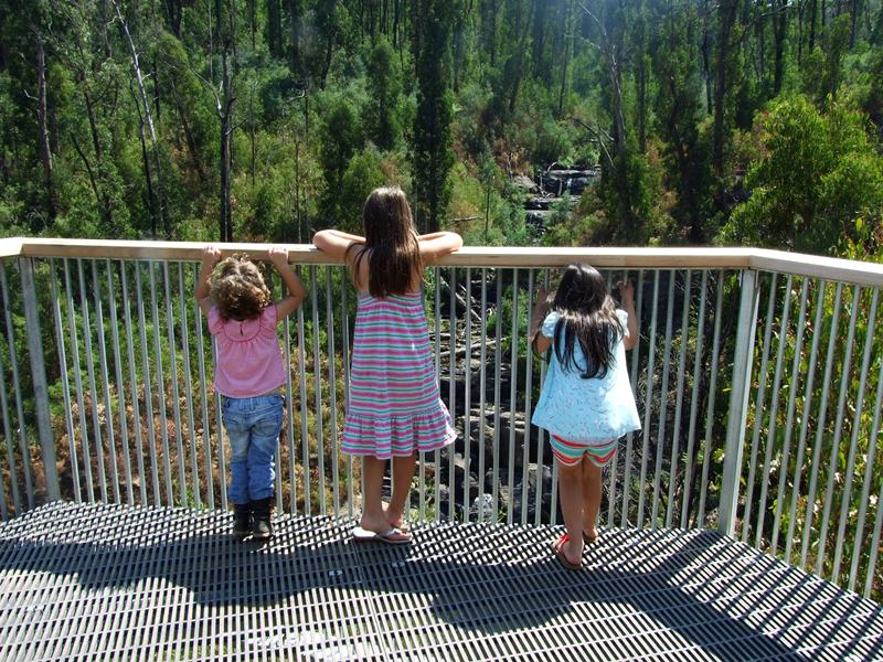 Our daughters taking in the view of Mason Falls after it's reopening.