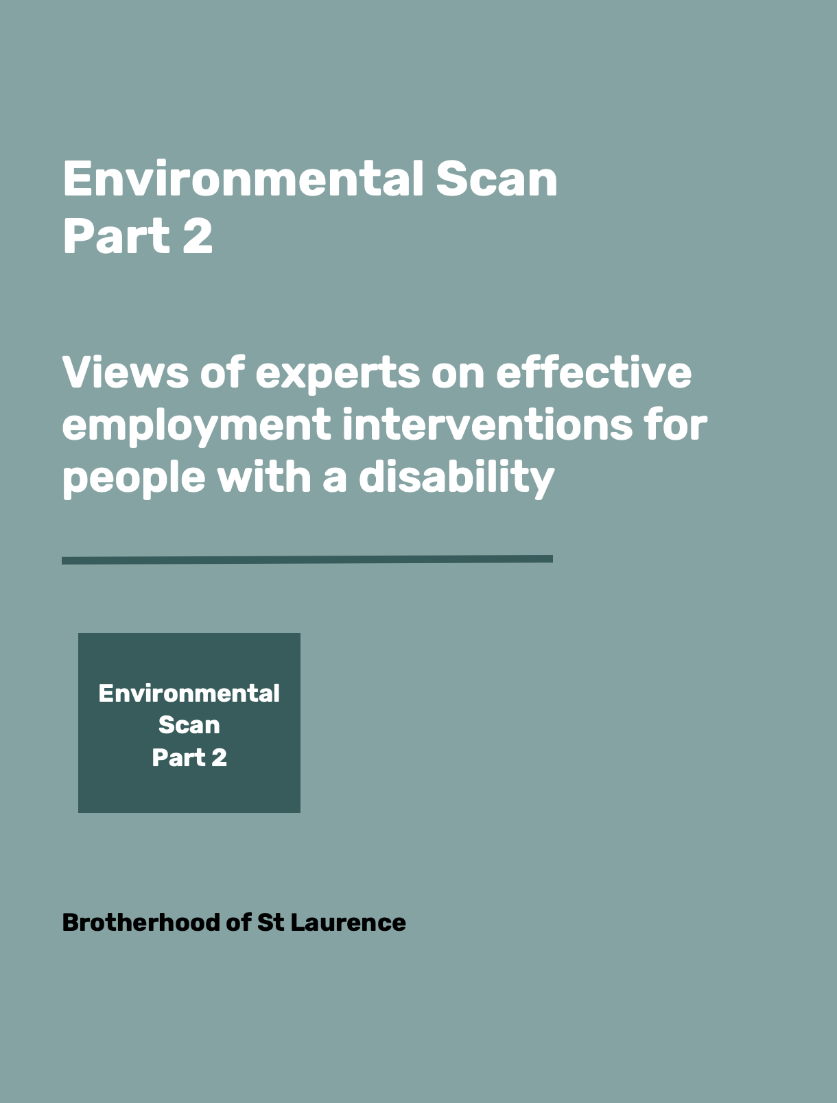 Environmental Scan Part 2 - the views of experts on employment interventions for People with Disability