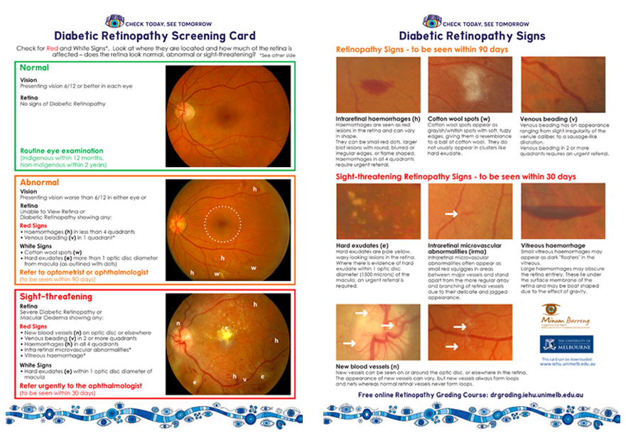 Diabetic Retinopathy Screening Card (for health professionals)